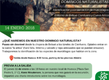 Domingos naturalistas1