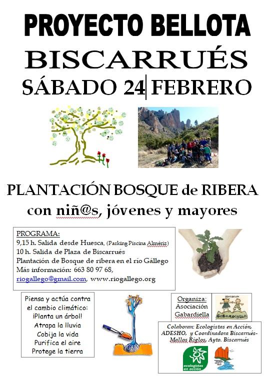 cartel plantacion